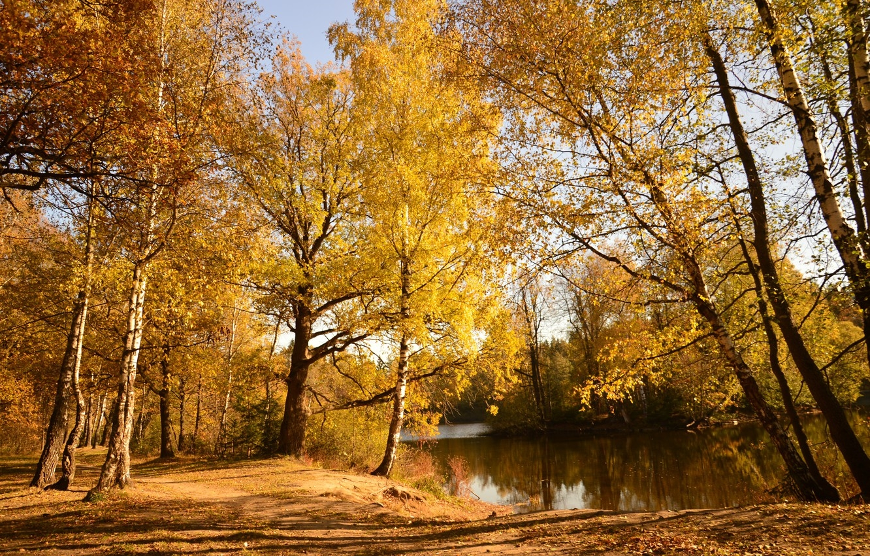 Красивое фото осени на рабочий стол Россия пейзажи006