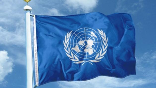 Красивые и фото на Международный день перевода (13)
