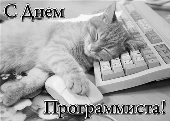 Красивые картинки С Днем тестировщика в России (11)