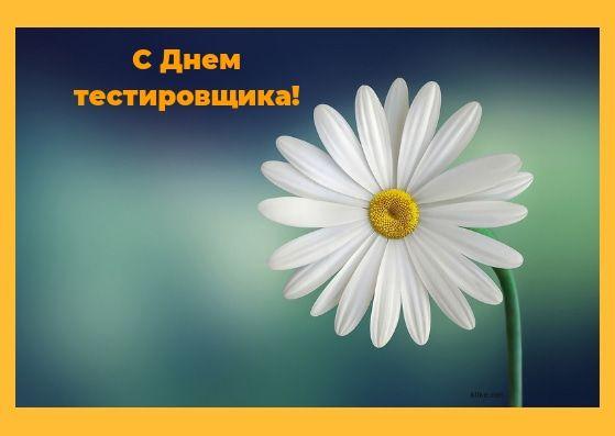 Красивые картинки С Днем тестировщика в России (6)