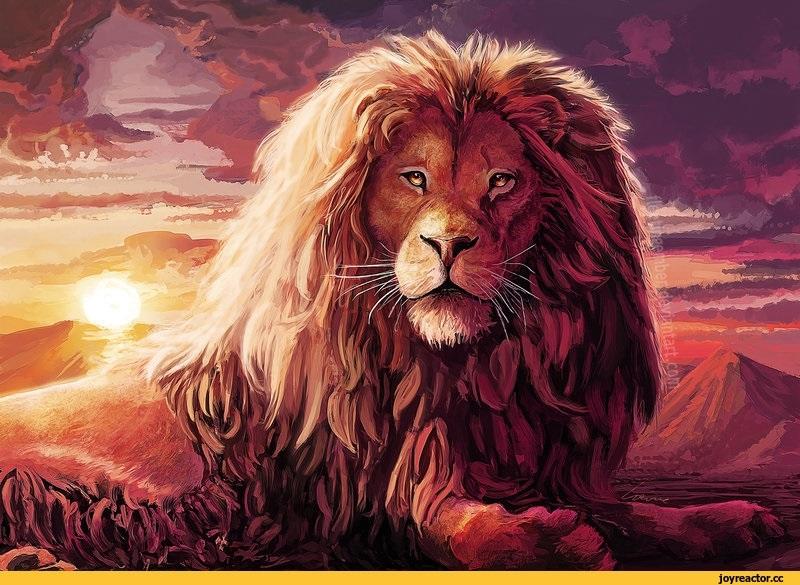 красивая открытка льва