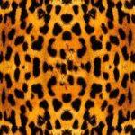 Красивые картинки леопардовый фон