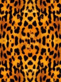 Красивые картинки леопардовый фон011