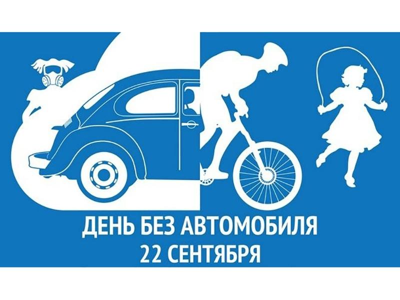 Красивые картинки на всемирный день без автомобиля (12)