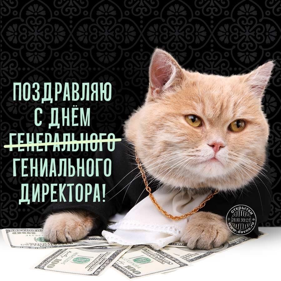 Красивые картинки на день генерального директора в России015