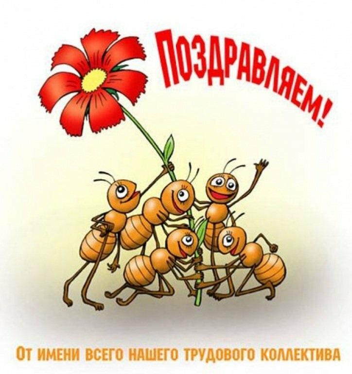 Красивые картинки на день генерального директора в России021