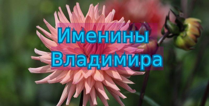 Красивые картинки на именины Владимира - сборка (12)