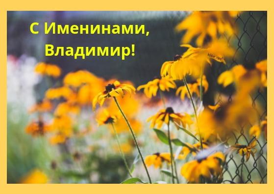 Красивые картинки на именины Владимира - сборка (13)