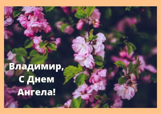 Красивые картинки на именины Владимира - сборка (14)