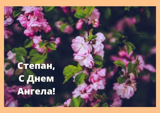 Красивые картинки на именины Степана - сборка (10)
