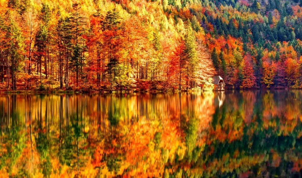 Красивые картинки на рабочий стол октябрь (4)