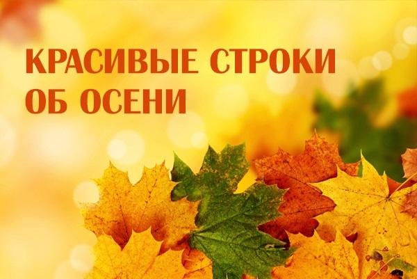 Красивые картинки осень воскресенье007