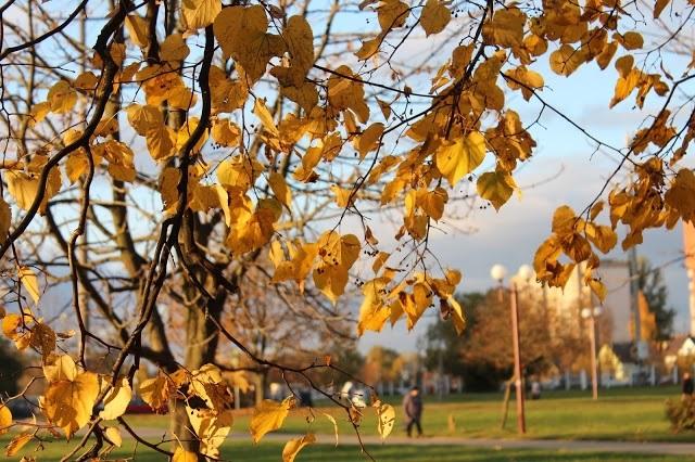 Красивые картинки осень воскресенье010