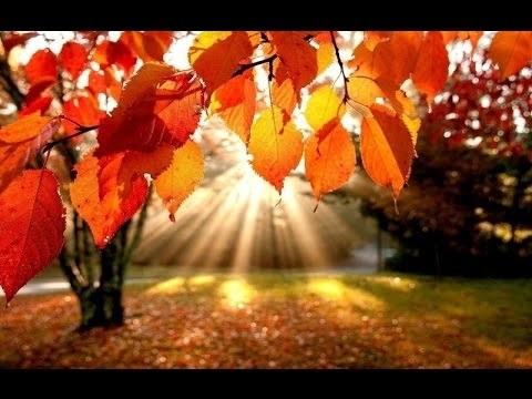Красивые картинки осень воскресенье011