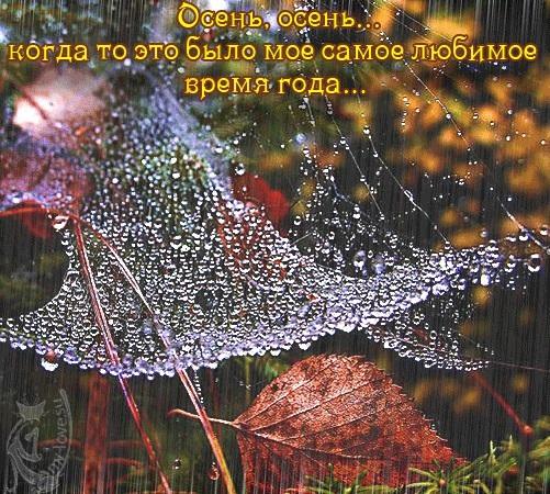 Красивые картинки осень воскресенье014