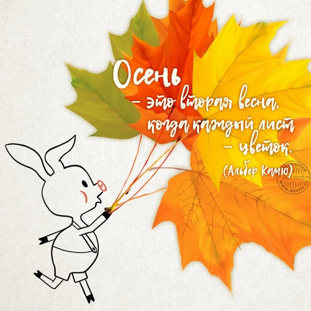 Красивые картинки осень воскресенье019