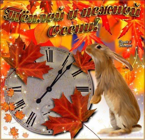 Красивые картинки осень воскресенье021