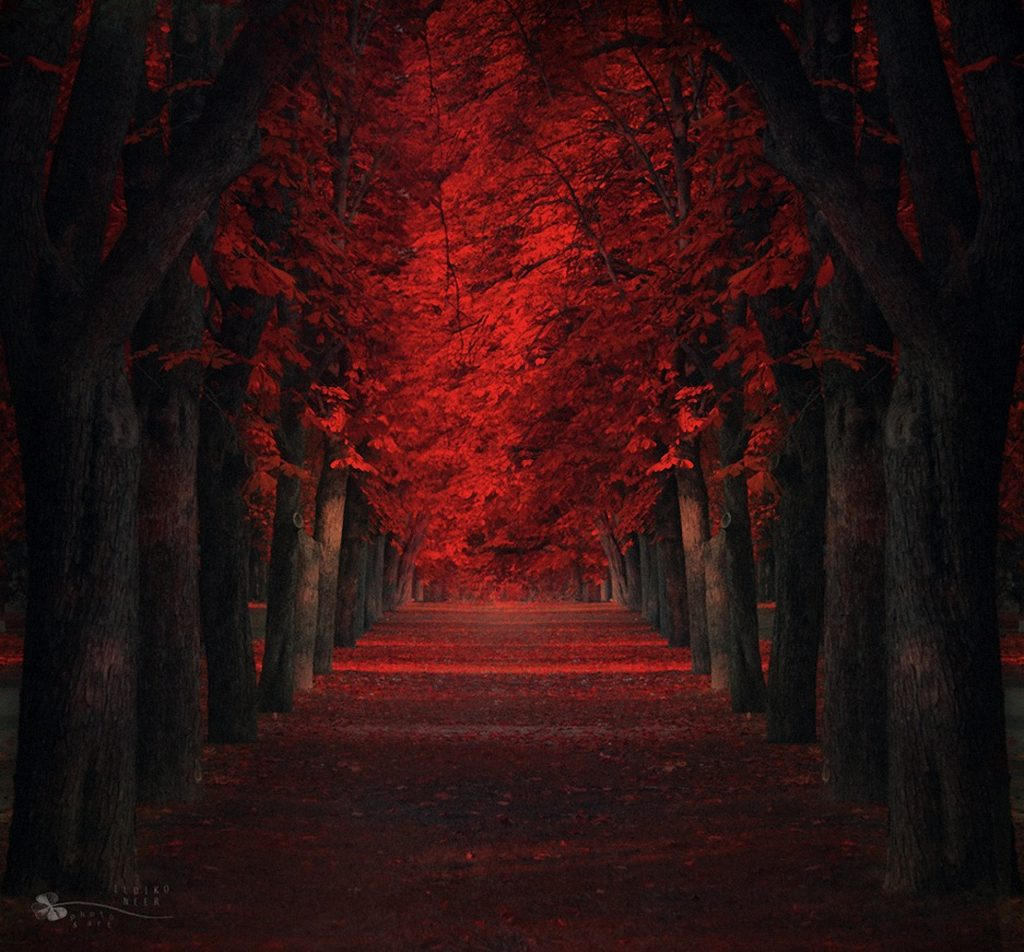 Красивые картинки сказочные осень (14)