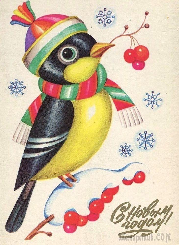 Красивые картинки сказочные птички (10)