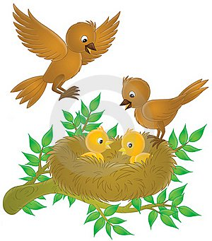 Красивые картинки сказочные птички (3)