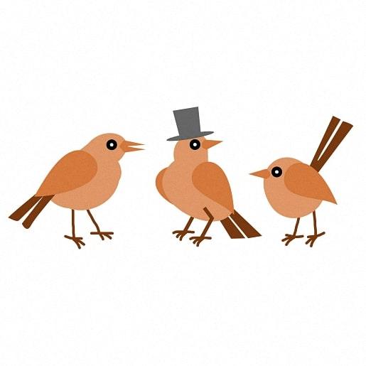 Красивые картинки сказочные птички (4)