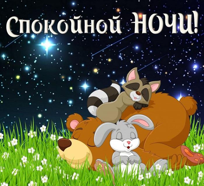 Красивые картинки спокойной ночи - 25 открыток (19)