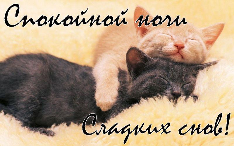 Красивые картинки спокойной ночи - 25 открыток (3)