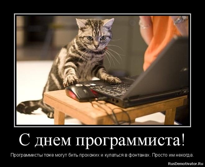 Красивые картинки с днем программиста - лучшие поздравления (10)