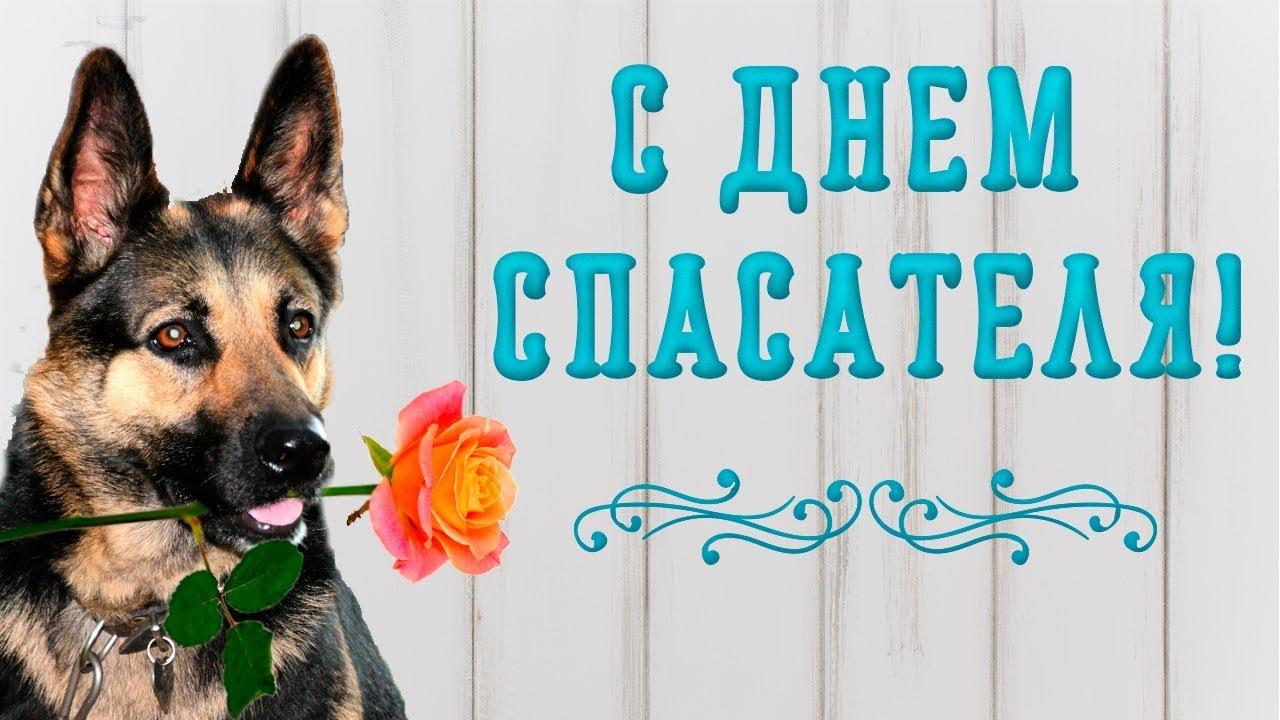 Красивые картинки с днем спасателя Украины   подборка открыток (13)
