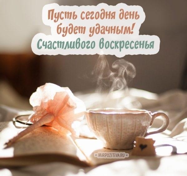 Красивые картинки с добрым утром воскресенья004