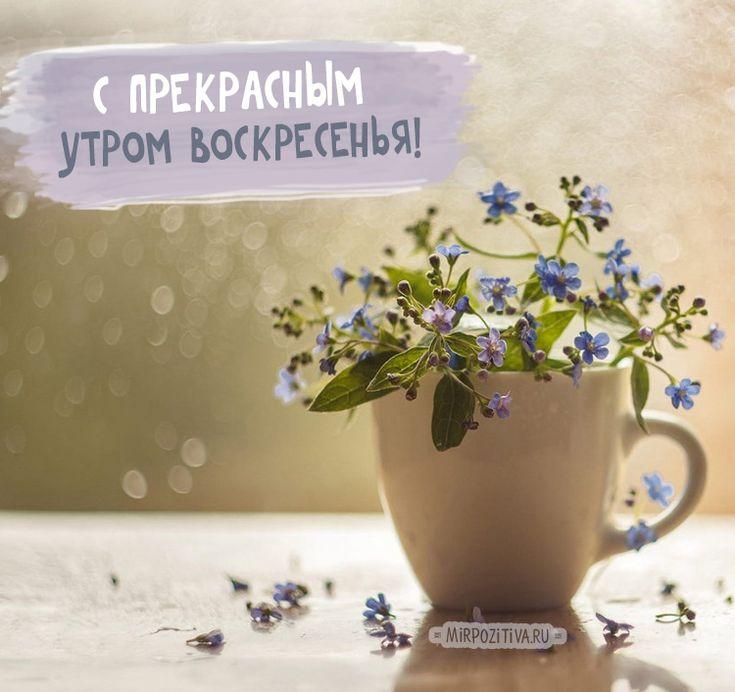 Красивые картинки с добрым утром в воскресенье - 20 открыток (15)