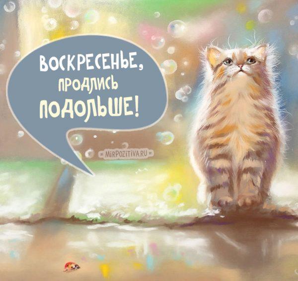 Красивые картинки с добрым утром в воскресенье - 20 открыток (18)