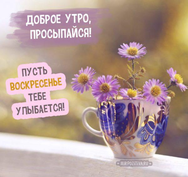 Красивые картинки с добрым утром в воскресенье - 20 открыток (19)