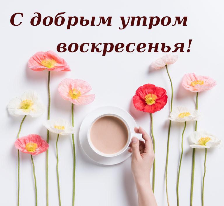 Красивые картинки с добрым утром в воскресенье - 20 открыток (29)