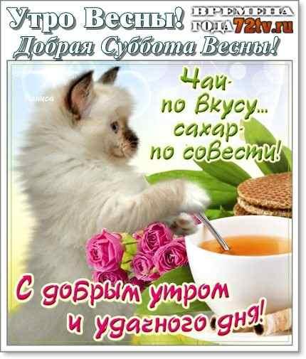 Красивые картинки с добрым утром в субботу - 32 открытки (24)