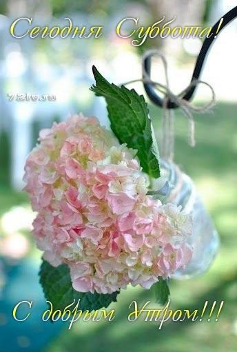 Красивые картинки с добрым утром субботним020