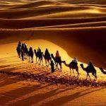 Красивые картинки с международным днем караванщика