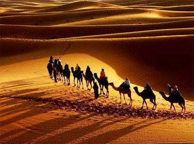 Красивые картинки с международным днем караванщика (3)
