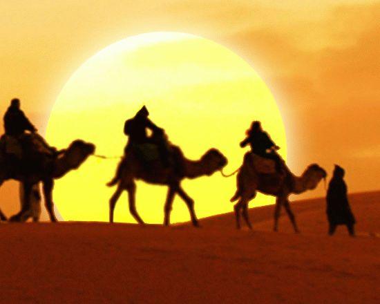Красивые картинки с международным днем караванщика (7)