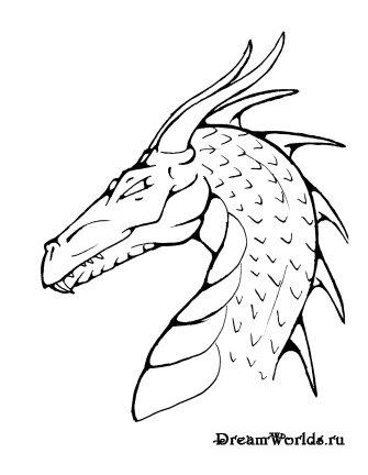 Красивые картины дракона карандашом (14)