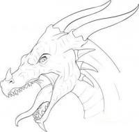 Красивые картины дракона карандашом (24)