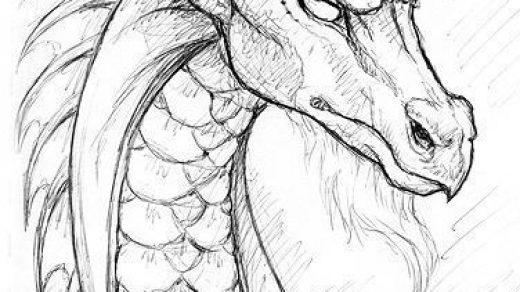 Красивые картины дракона карандашом (3)