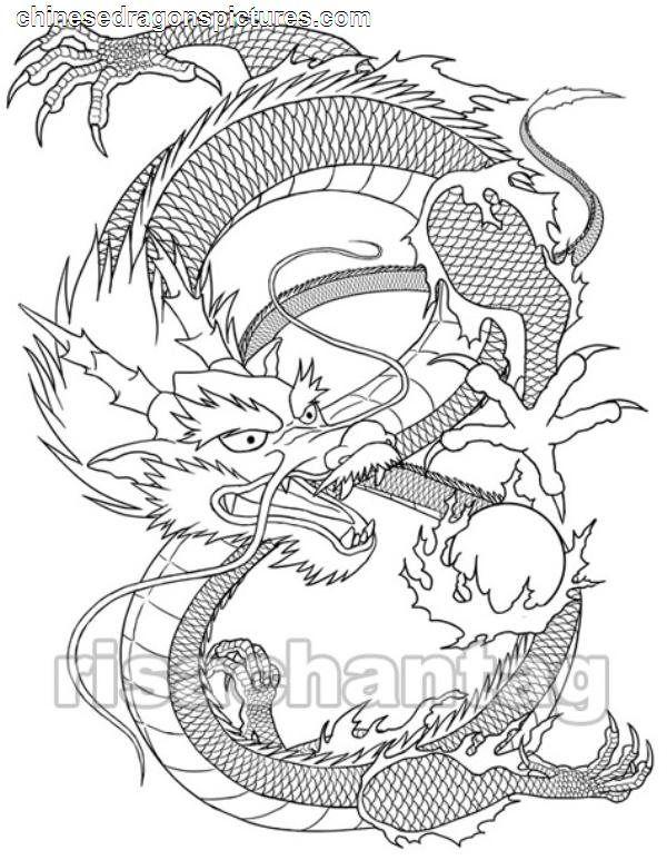 Красивые картины дракона карандашом (31)