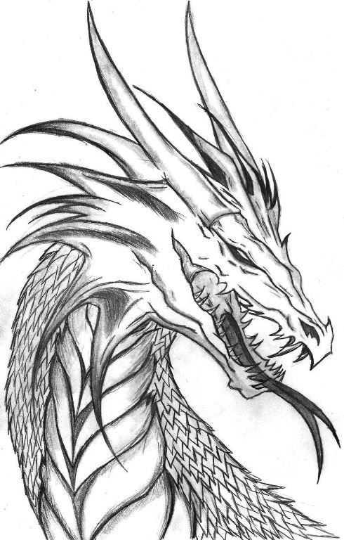 Красивые картины дракона карандашом (34)