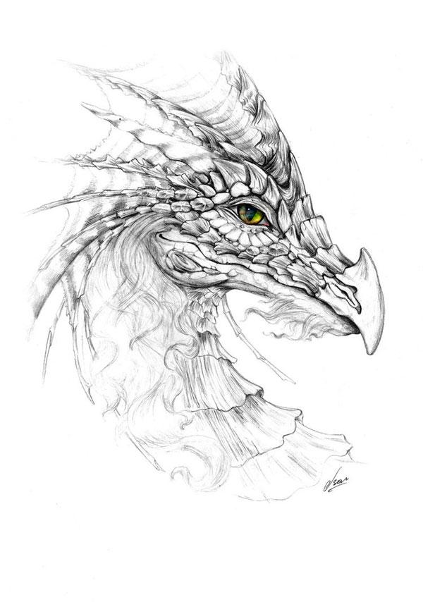 Красивые картины дракона карандашом (35)
