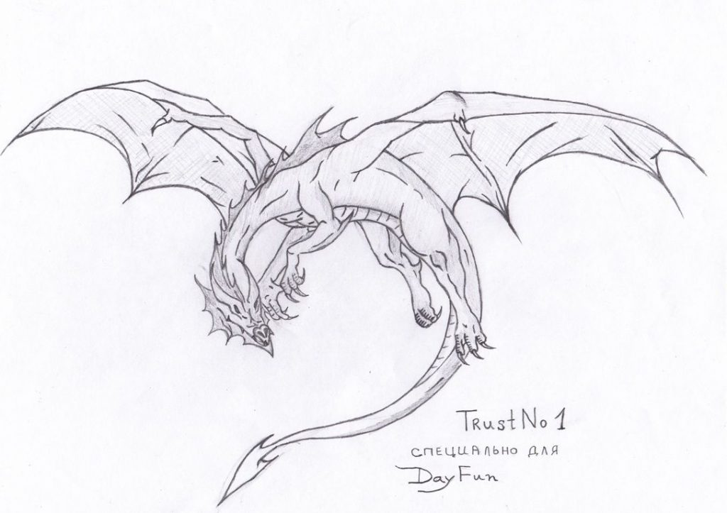 Красивые картины дракона карандашом (36)