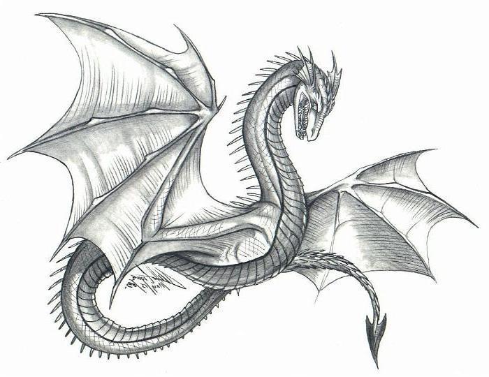 Красивые картины дракона карандашом (4)