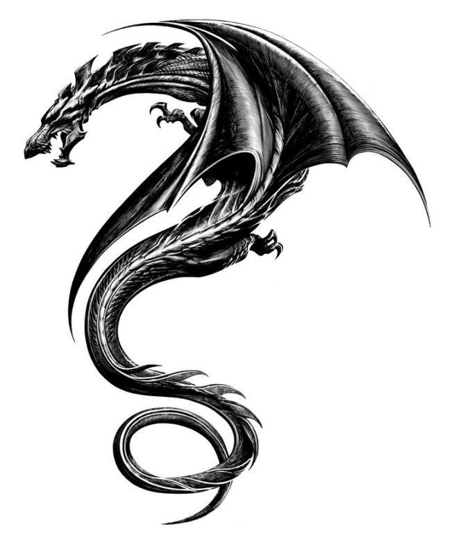 Красивые картины дракона карандашом (5)