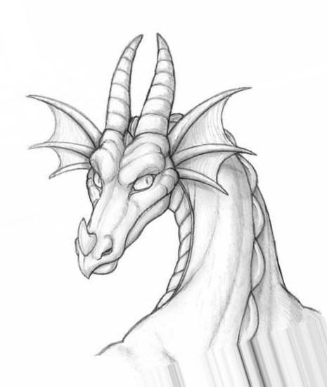 Красивые картины дракона карандашом (9)