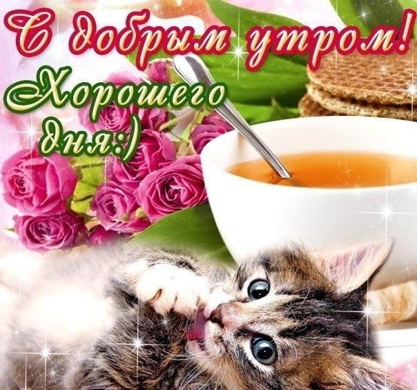 Красивые открытки с добрым утром в воскресенье003